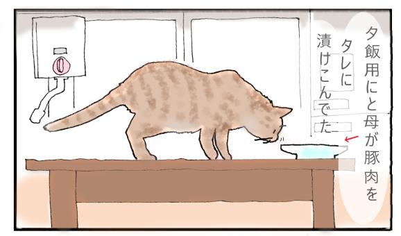 猫と小学生アイキャッチ用