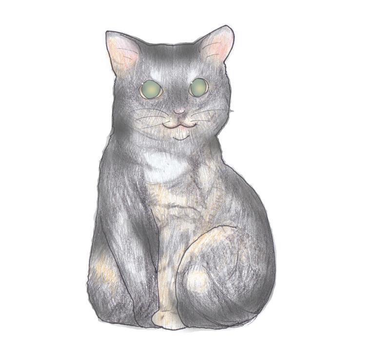 サビ猫ジェリー♀